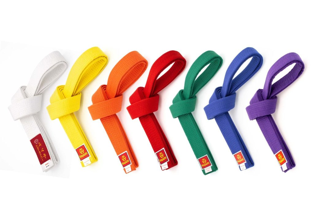 purpose of the color belts in karate